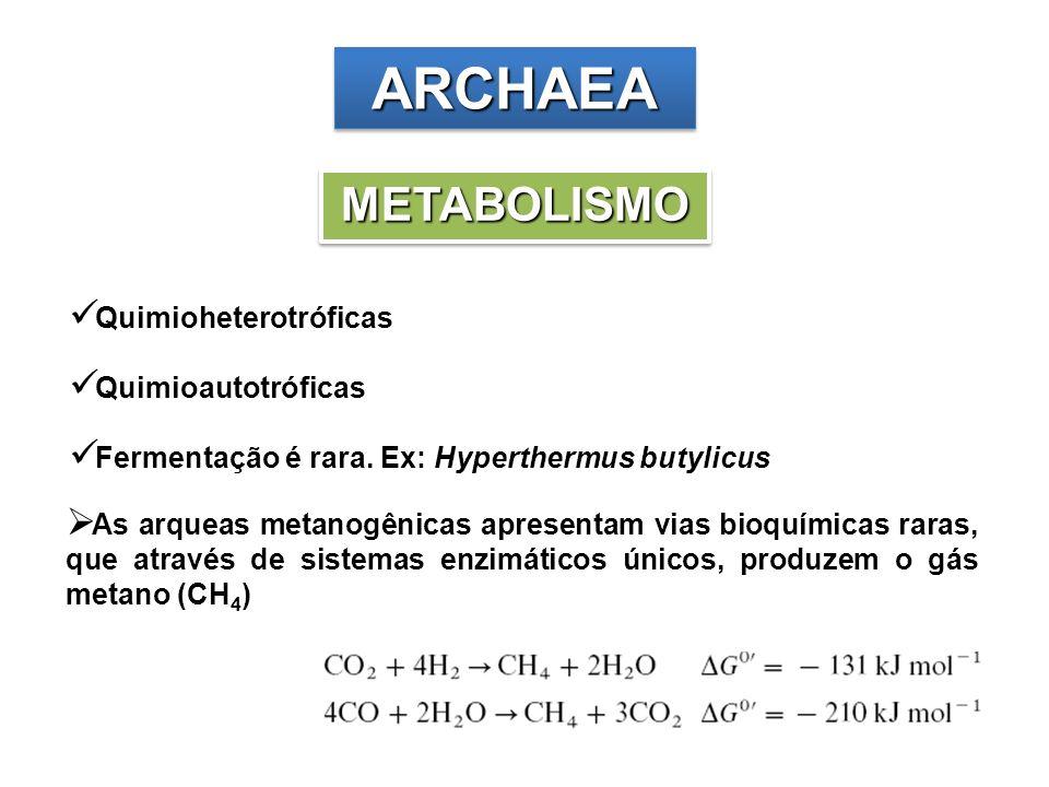 ARCHAEA METABOLISMO Quimioheterotróficas Quimioautotróficas