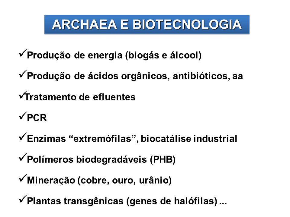 ARCHAEA E BIOTECNOLOGIA