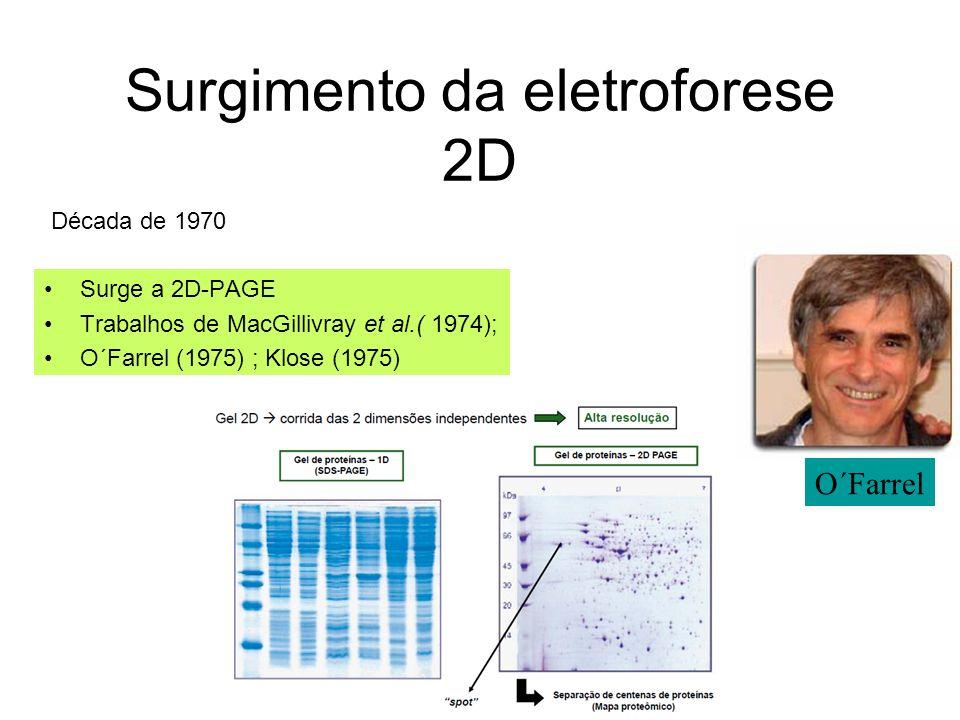 Surgimento da eletroforese 2D