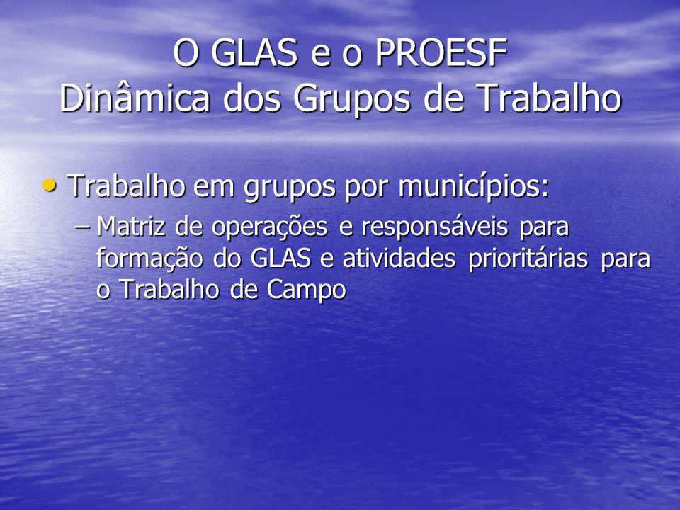 O GLAS e o PROESF Dinâmica dos Grupos de Trabalho