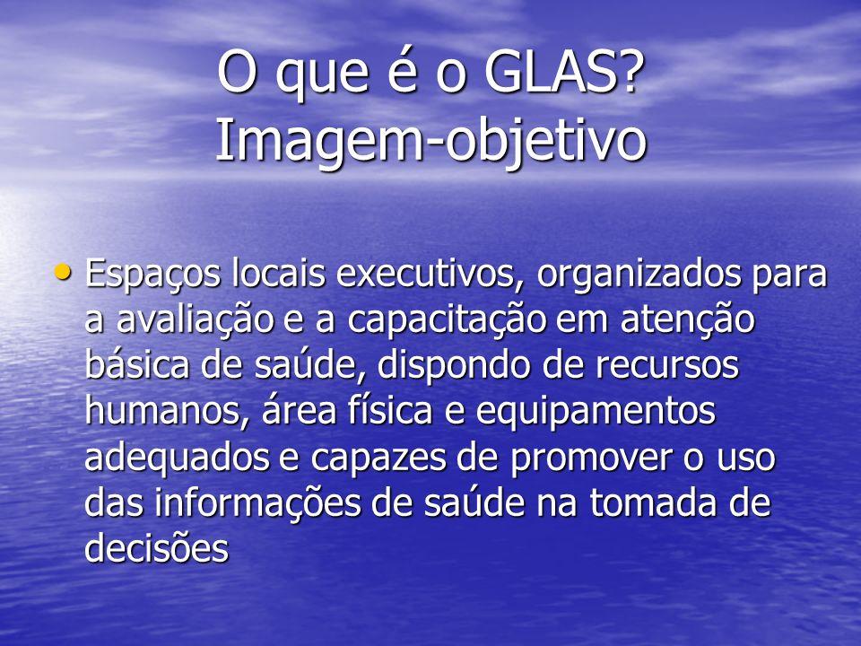O que é o GLAS Imagem-objetivo