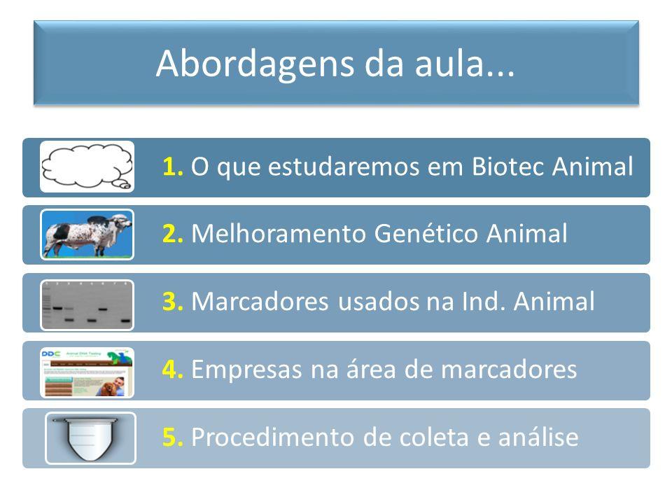Abordagens da aula... 1. O que estudaremos em Biotec Animal
