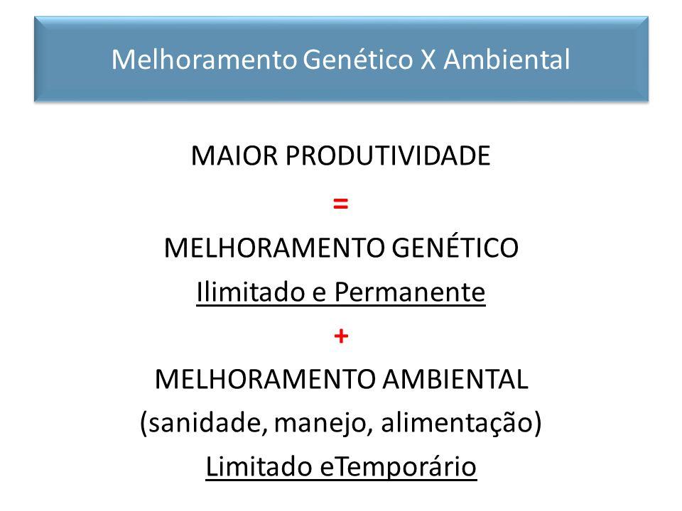 = Melhoramento Genético X Ambiental MAIOR PRODUTIVIDADE