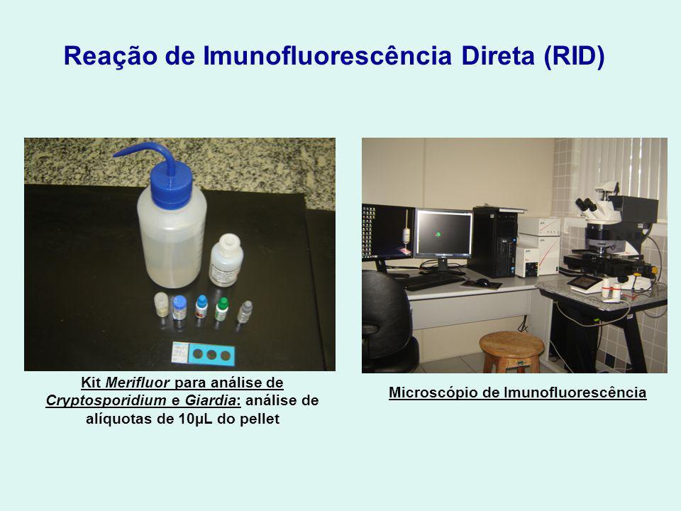 Microscópio de Imunofluorescência