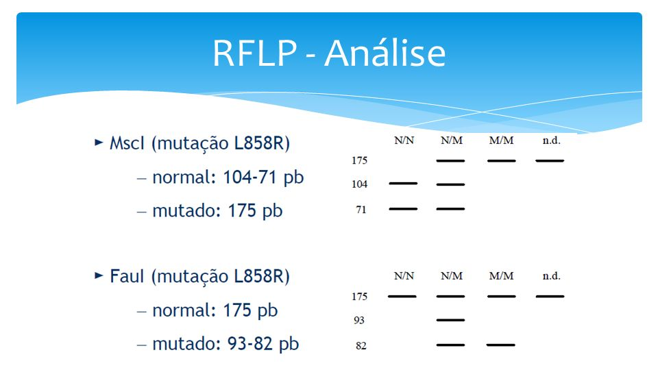 RFLP - Análise