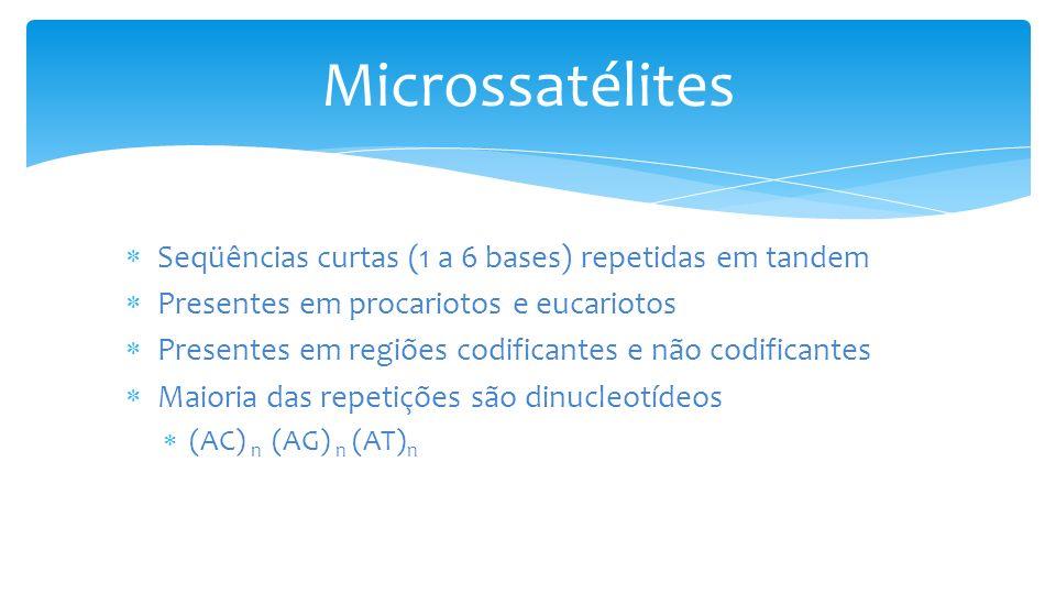 Microssatélites Seqüências curtas (1 a 6 bases) repetidas em tandem