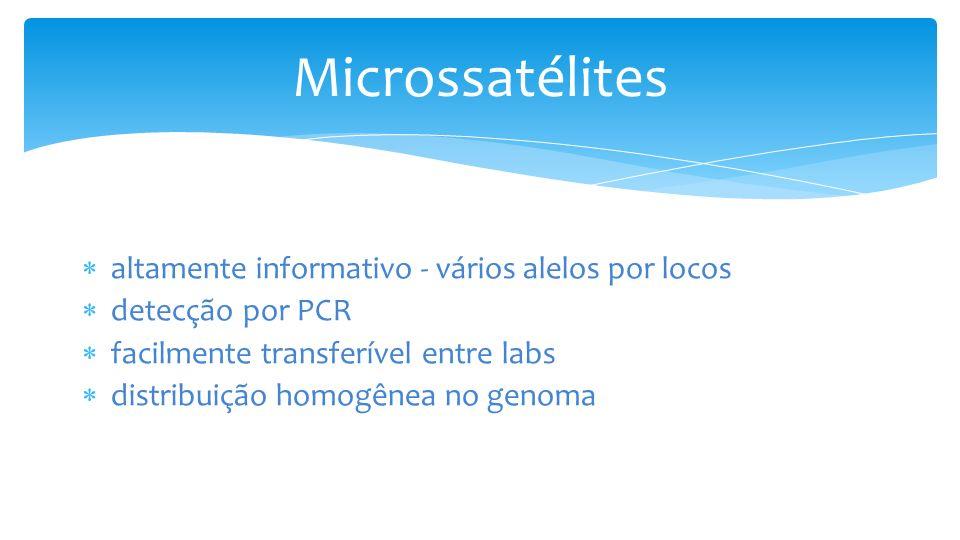 Microssatélites altamente informativo - vários alelos por locos