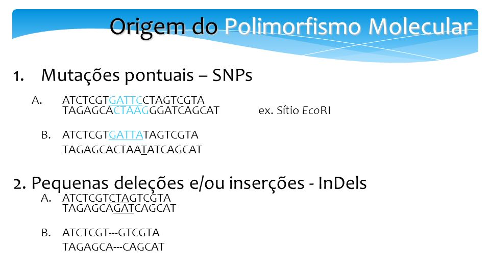 Origem do Polimorfismo Molecular