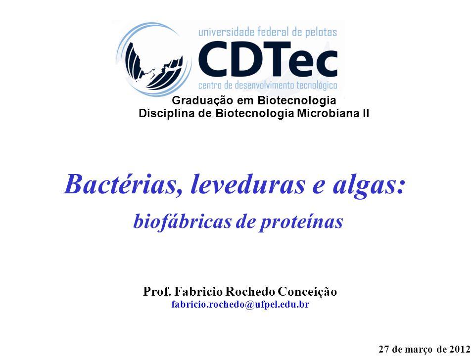 Bactérias, leveduras e algas: biofábricas de proteínas