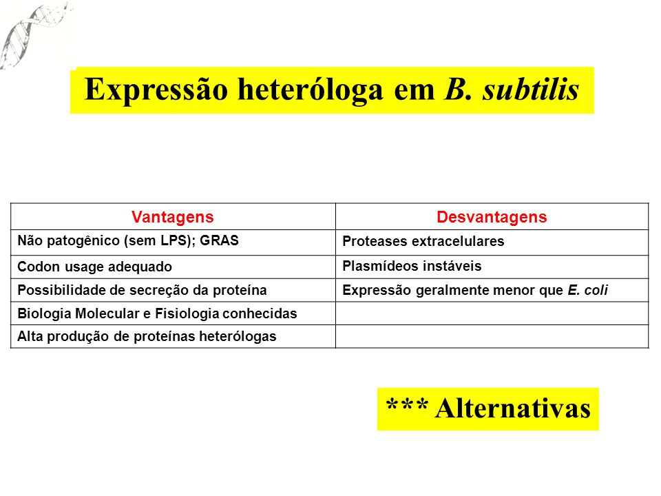 Expressão heteróloga em B. subtilis