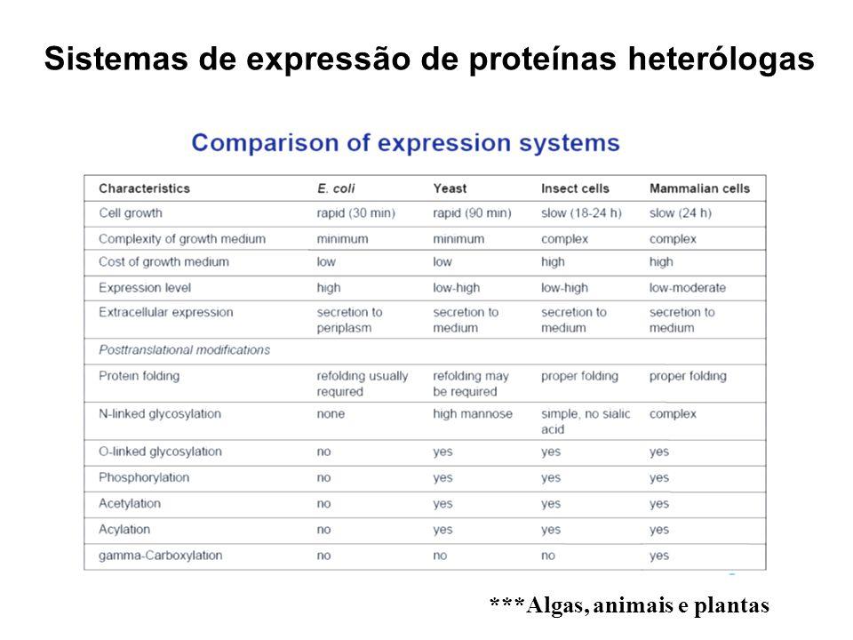 Sistemas de expressão de proteínas heterólogas