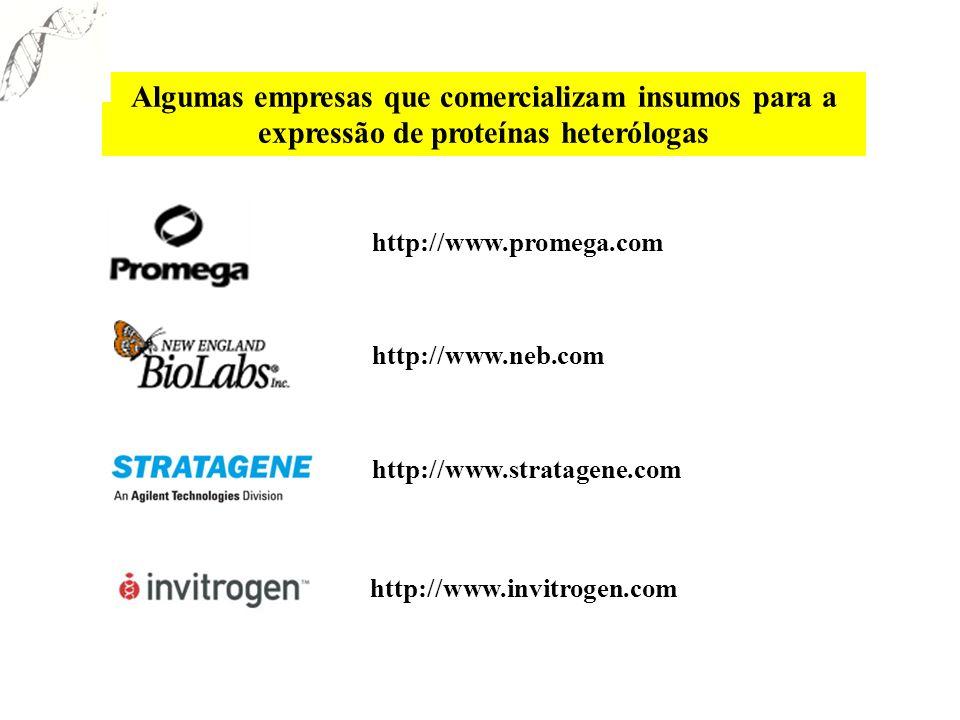 Algumas empresas que comercializam insumos para a expressão de proteínas heterólogas