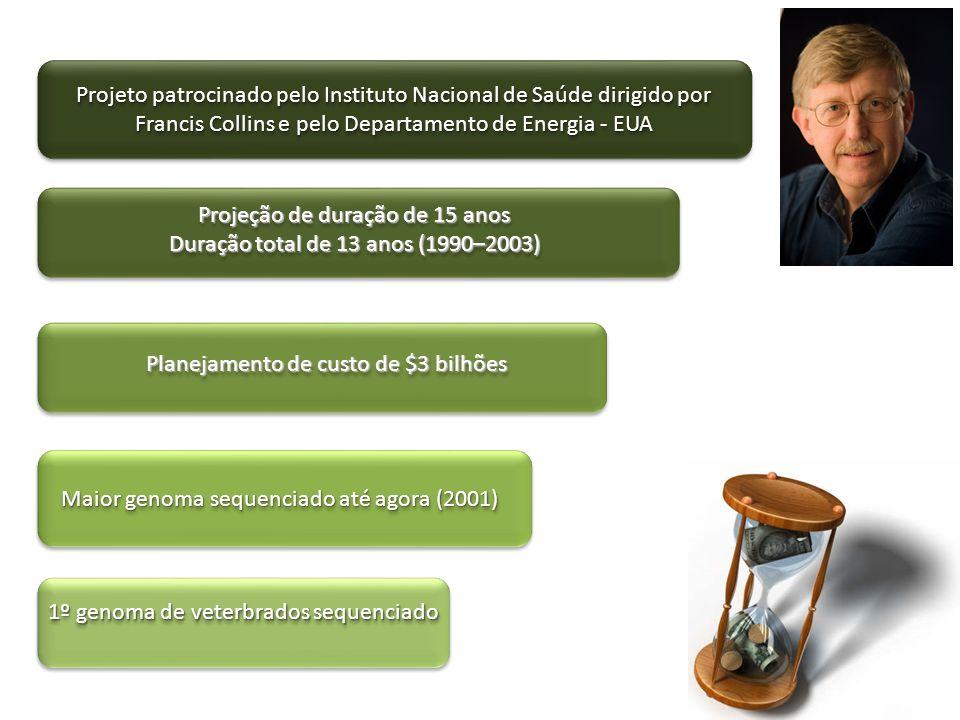 Projeção de duração de 15 anos Duração total de 13 anos (1990–2003)