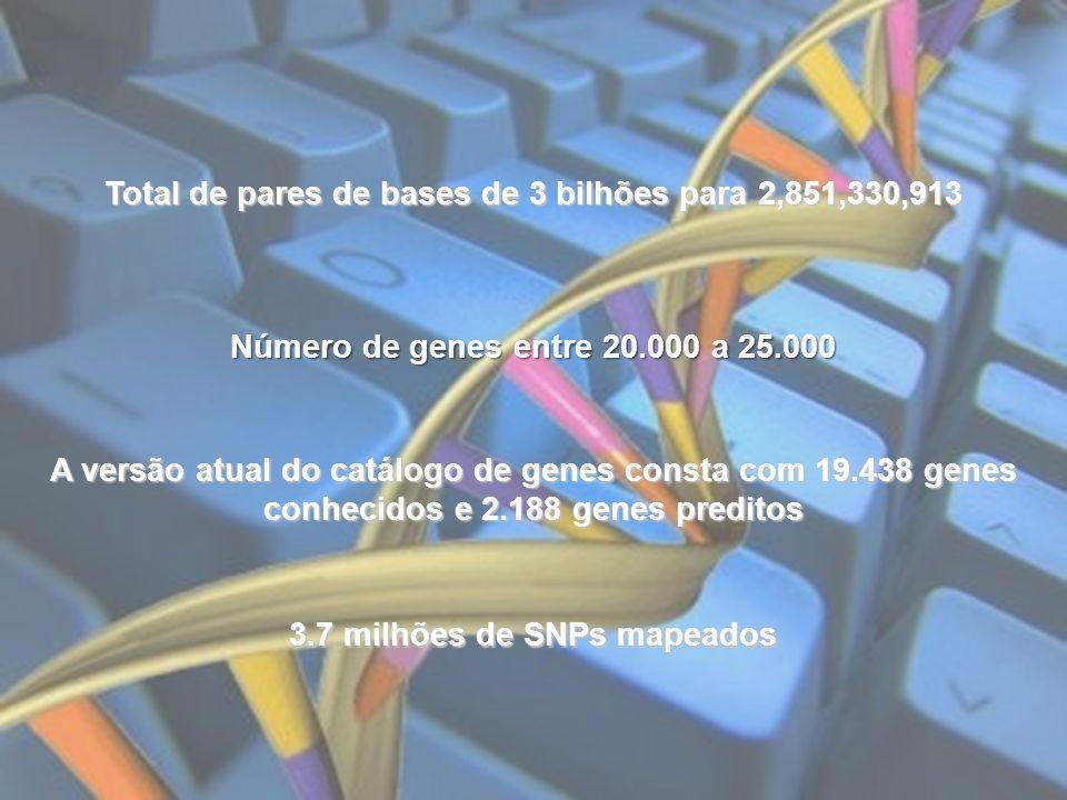 Total de pares de bases de 3 bilhões para 2,851,330,913