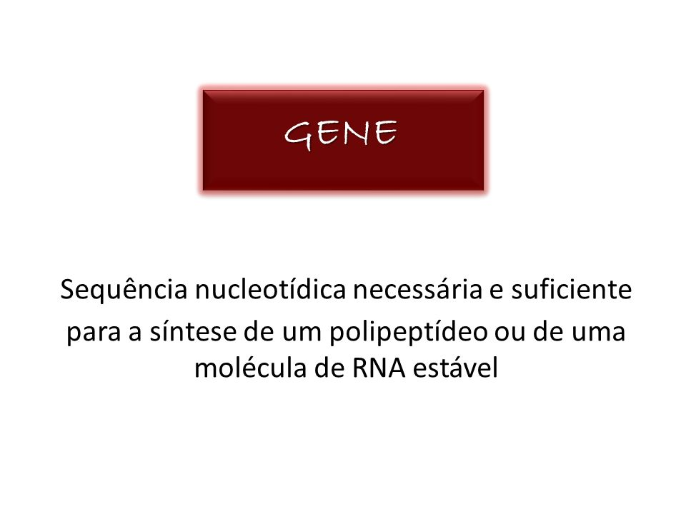 GENE Sequência nucleotídica necessária e suficiente para a síntese de um polipeptídeo ou de uma molécula de RNA estável.