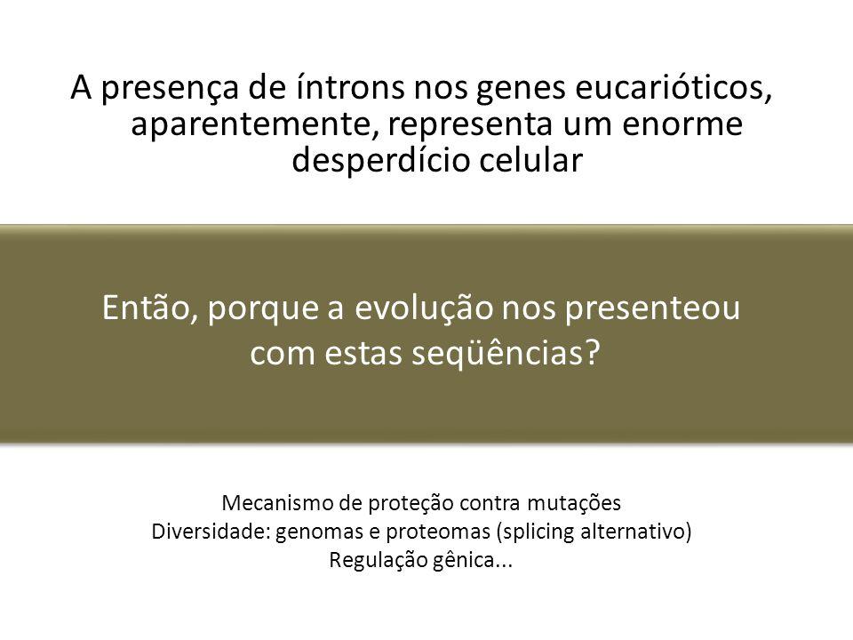 Então, porque a evolução nos presenteou com estas seqüências