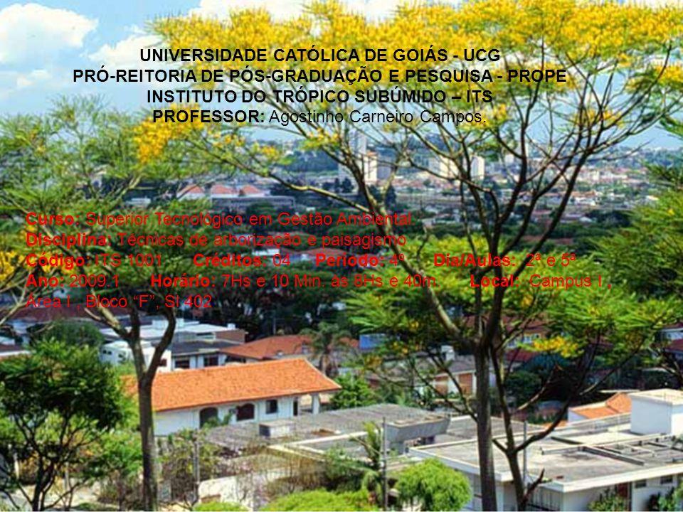 UNIVERSIDADE CATÓLICA DE GOIÁS - UCG