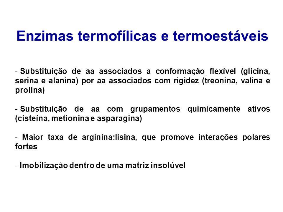 Enzimas termofílicas e termoestáveis