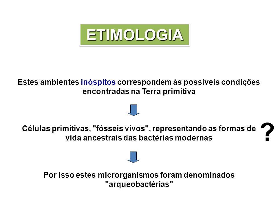 Por isso estes microrganismos foram denominados arqueobactérias
