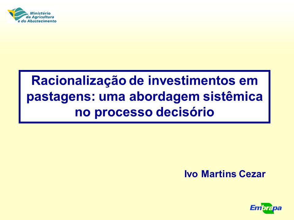 Racionalização de investimentos em pastagens: uma abordagem sistêmica no processo decisório