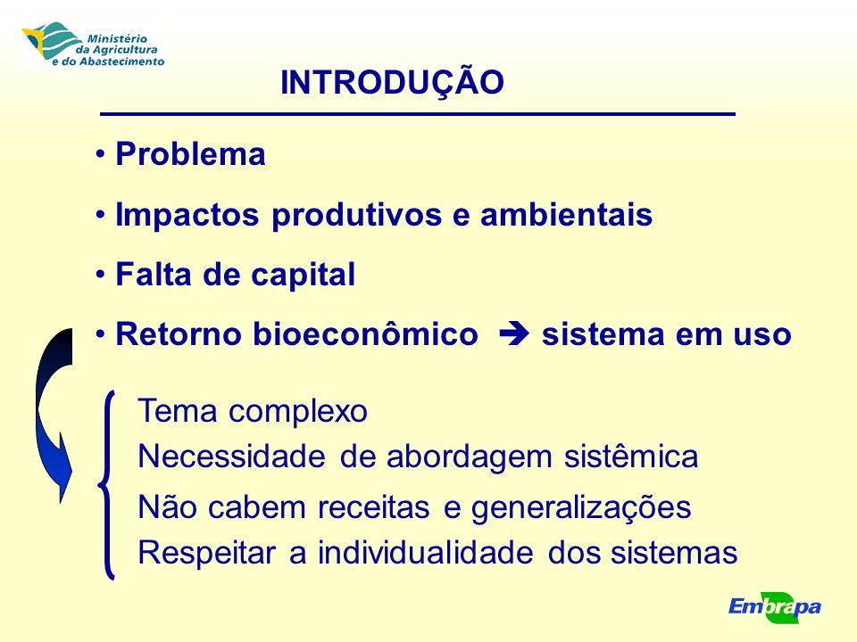 INTRODUÇÃO Problema. Impactos produtivos e ambientais. Falta de capital. Retorno bioeconômico  sistema em uso.