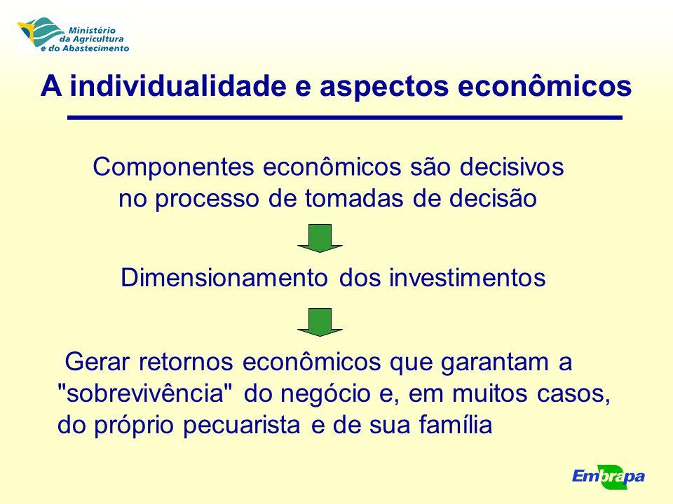 Componentes econômicos são decisivos no processo de tomadas de decisão