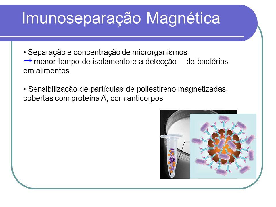 Imunoseparação Magnética