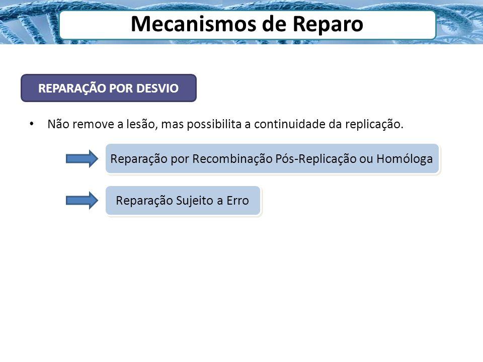 Mecanismos de Reparo REPARAÇÃO POR DESVIO