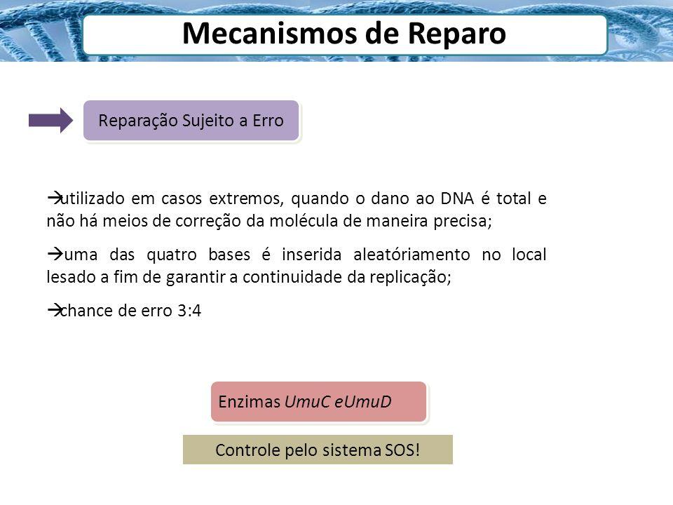 Mecanismos de Reparo Reparação Sujeito a Erro