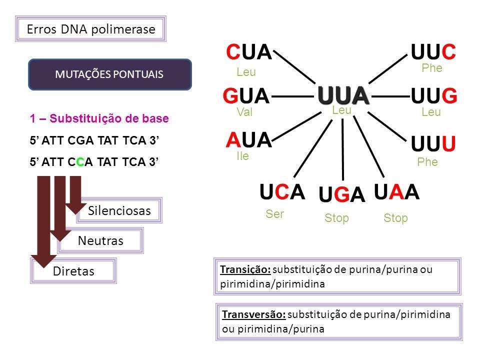 UUA CUA UUC GUA UUG AUA UUU UCA UAA UGA Erros DNA polimerase