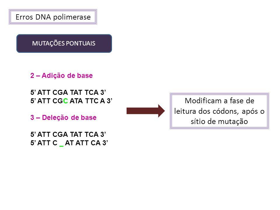 Modificam a fase de leitura dos códons, após o sítio de mutação