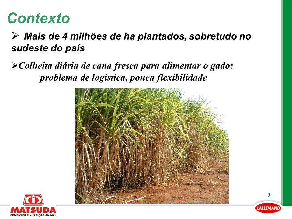 Contexto Mais de 4 milhões de ha plantados, sobretudo no sudeste do país.