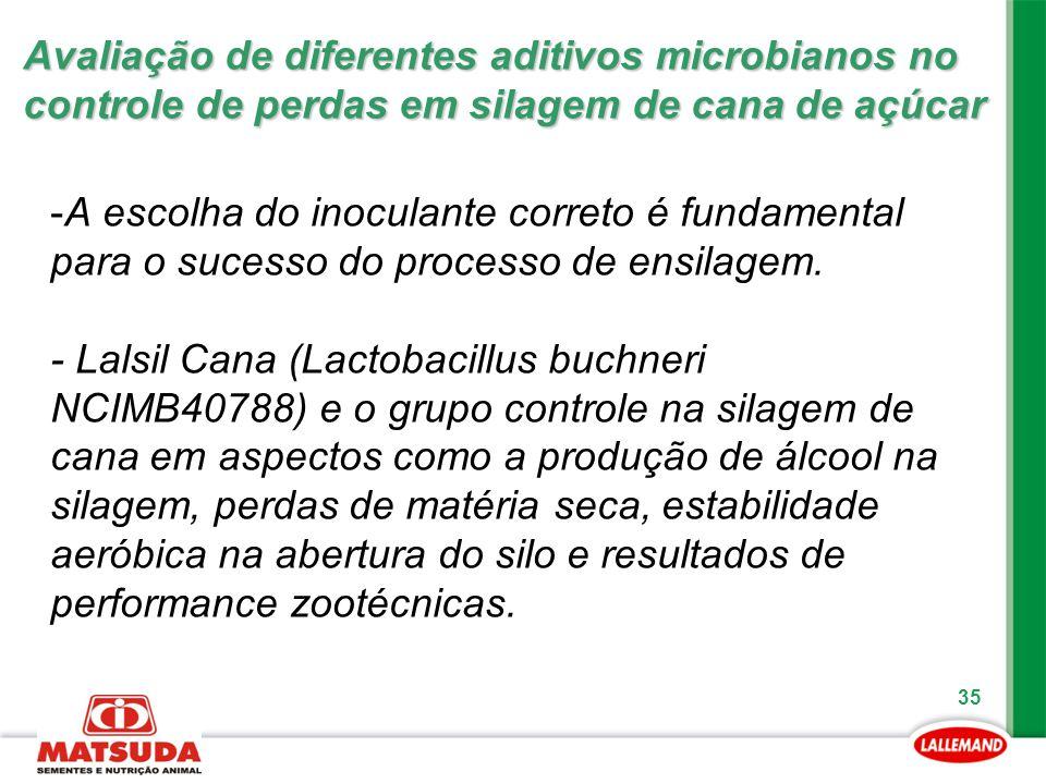 Avaliação de diferentes aditivos microbianos no controle de perdas em silagem de cana de açúcar