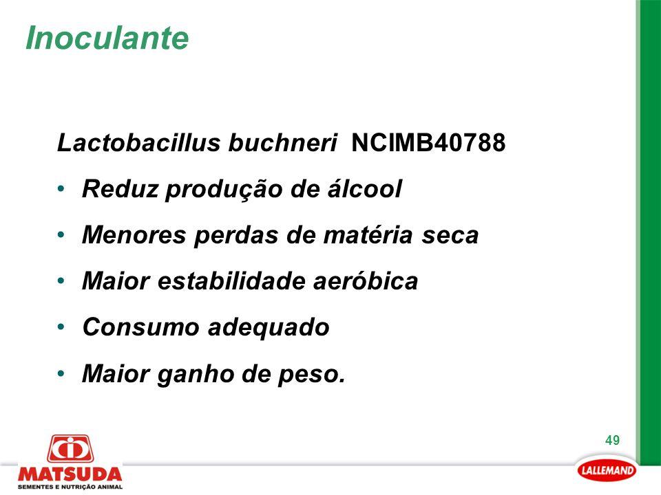 Inoculante Lactobacillus buchneri NCIMB40788 Reduz produção de álcool