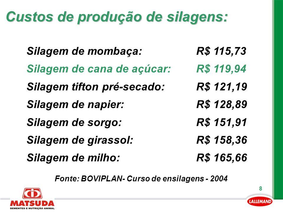 Custos de produção de silagens: