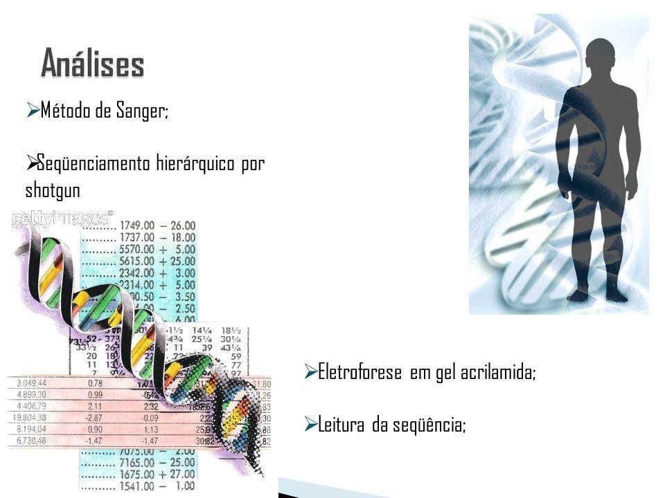 Análises Método de Sanger; Seqüenciamento hierárquico por shotgun