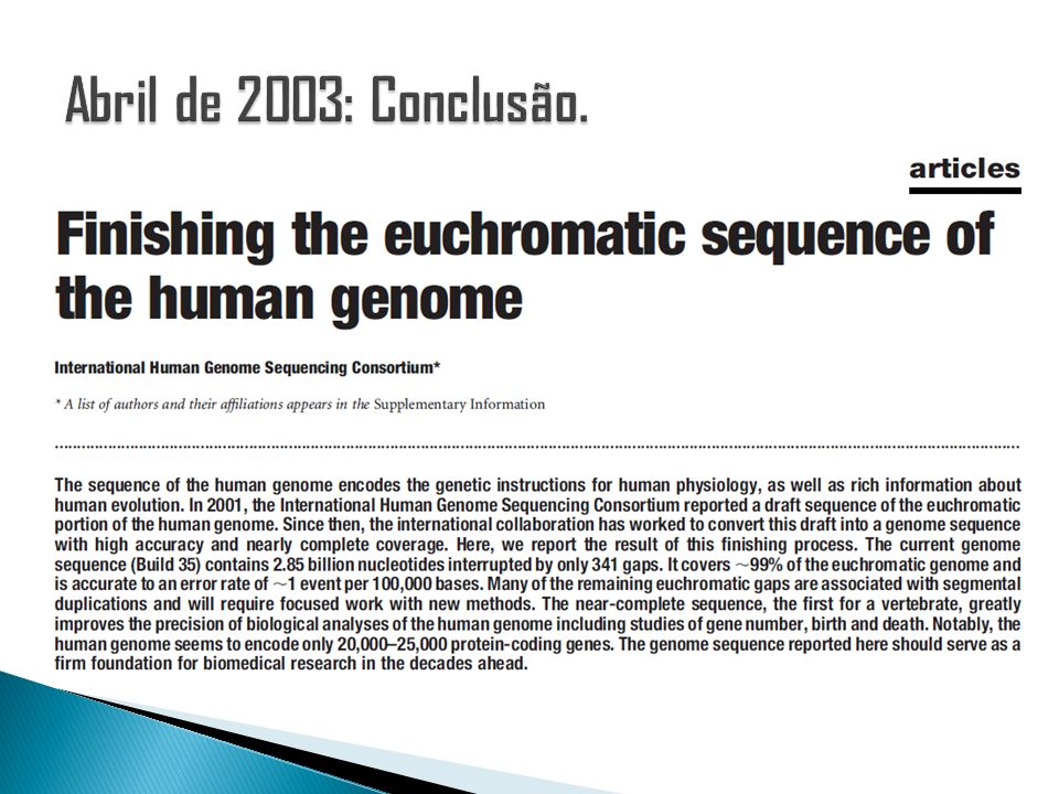 Abril de 2003: Conclusão.