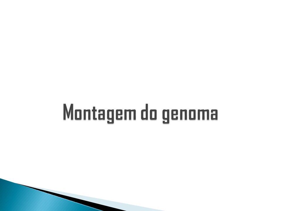 Montagem do genoma