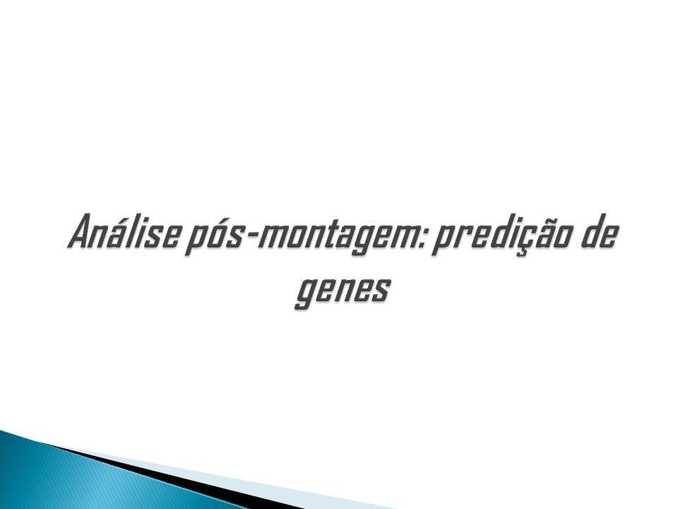Análise pós-montagem: predição de genes