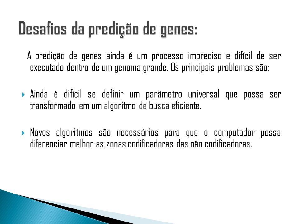 Desafios da predição de genes: