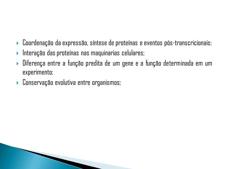 Coordenação da expressão, síntese de proteínas e eventos pós-transcricionais;