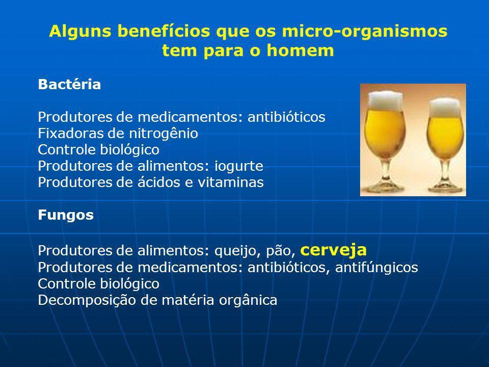 Alguns benefícios que os micro-organismos tem para o homem