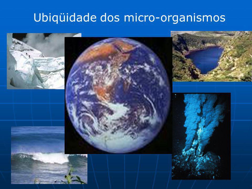 Ubiqüidade dos micro-organismos