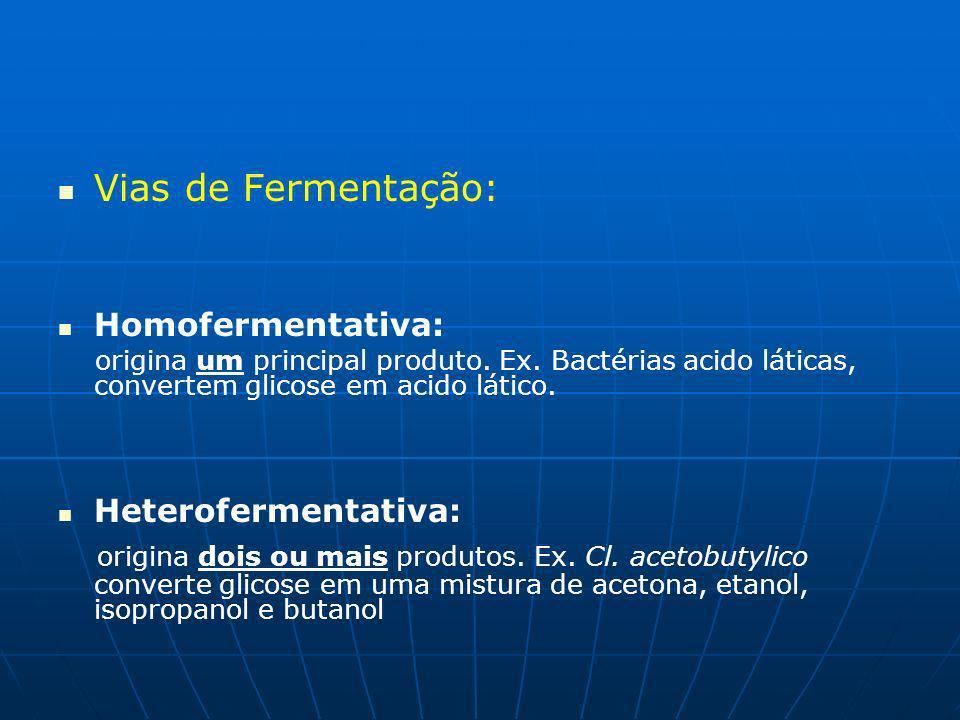 Vias de Fermentação: Homofermentativa: origina um principal produto. Ex. Bactérias acido láticas, convertem glicose em acido lático.