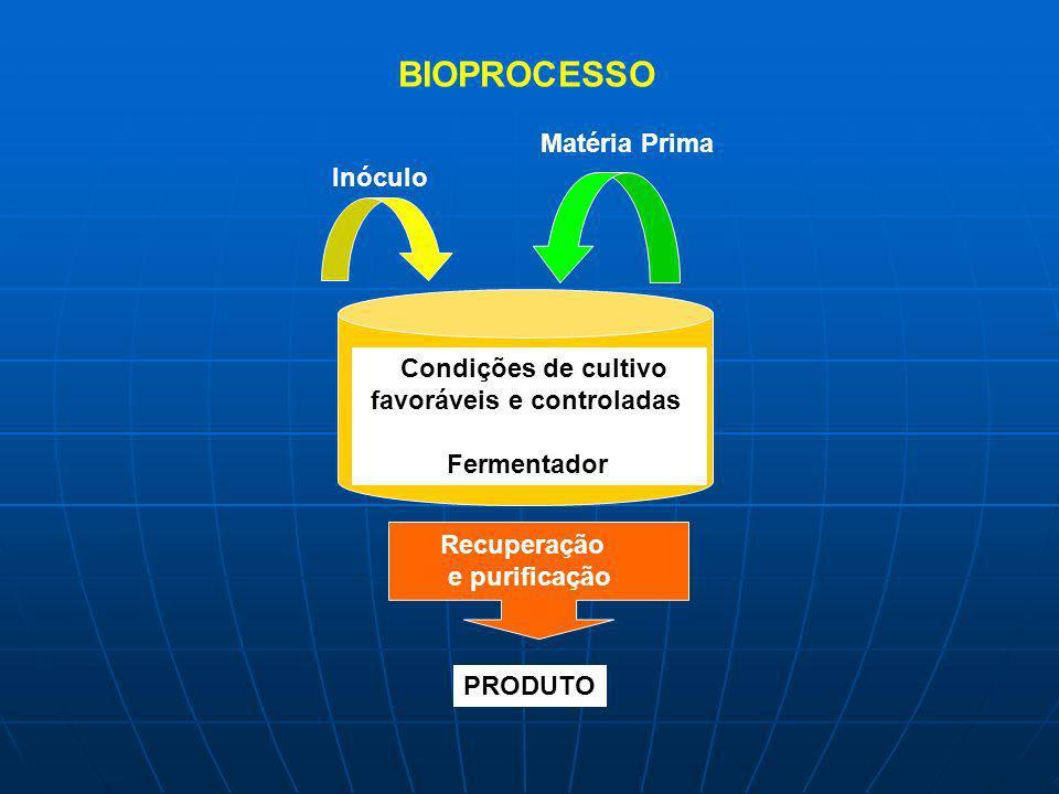 BIOPROCESSO Matéria Prima Inóculo Condições de cultivo