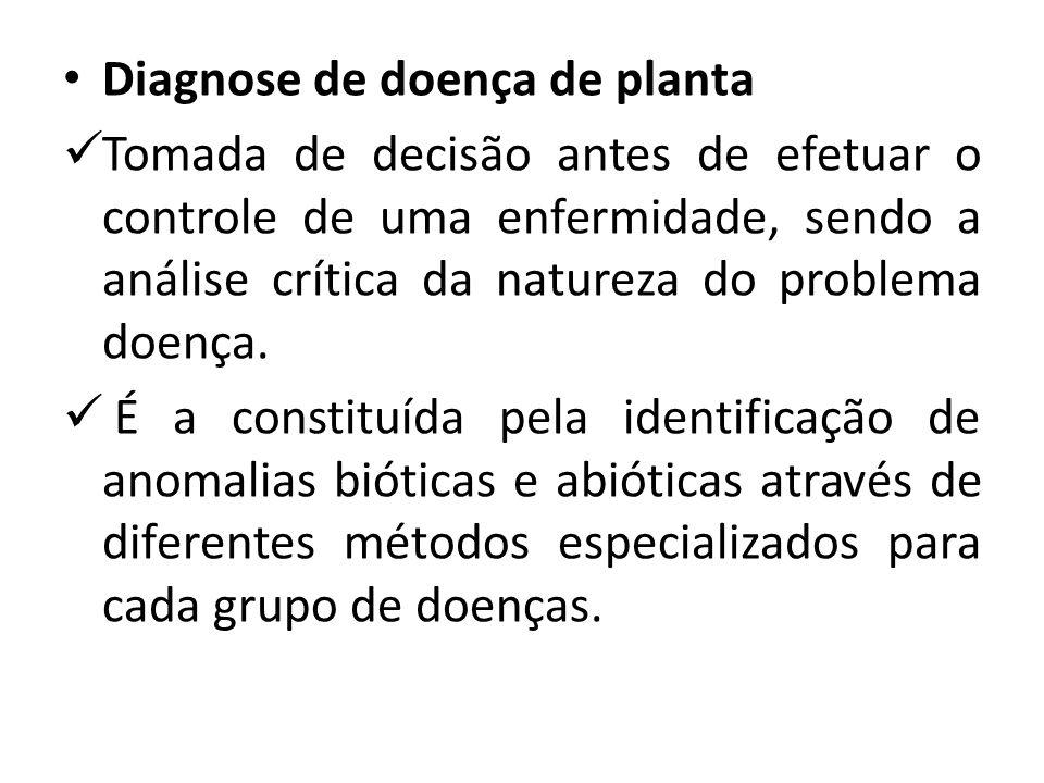 Diagnose de doença de planta