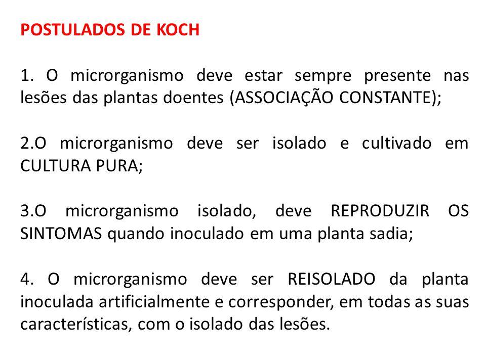 POSTULADOS DE KOCH 1. O microrganismo deve estar sempre presente nas lesões das plantas doentes (ASSOCIAÇÃO CONSTANTE);