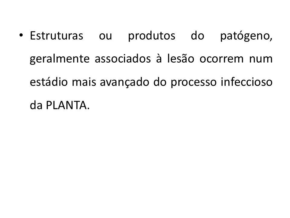 Estruturas ou produtos do patógeno, geralmente associados à lesão ocorrem num estádio mais avançado do processo infeccioso da PLANTA.