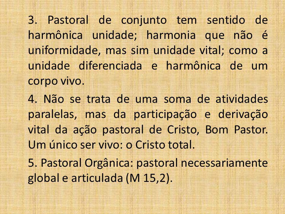 3. Pastoral de conjunto tem sentido de harmônica unidade; harmonia que não é uniformidade, mas sim unidade vital; como a unidade diferenciada e harmônica de um corpo vivo.