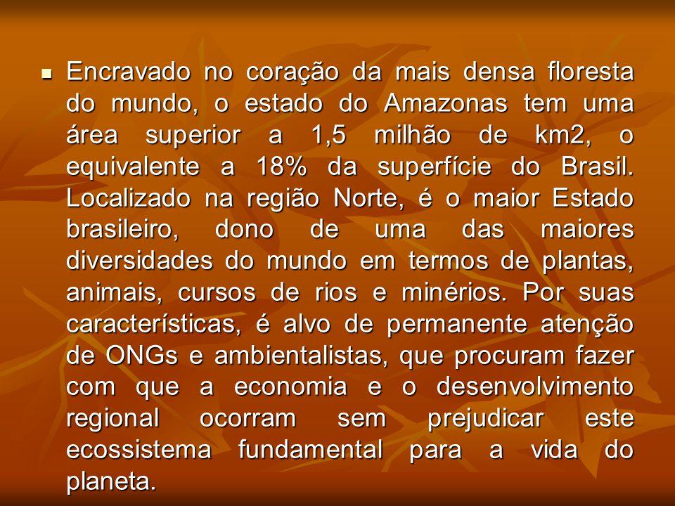Encravado no coração da mais densa floresta do mundo, o estado do Amazonas tem uma área superior a 1,5 milhão de km2, o equivalente a 18% da superfície do Brasil.